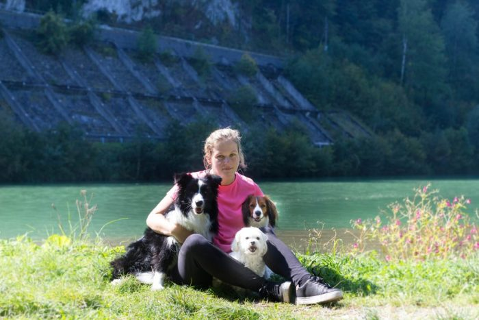 Kooikerhondje Österreich
